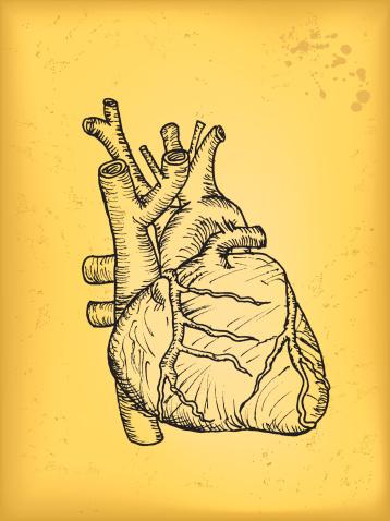 Yasmin Heart Attack Dangers
